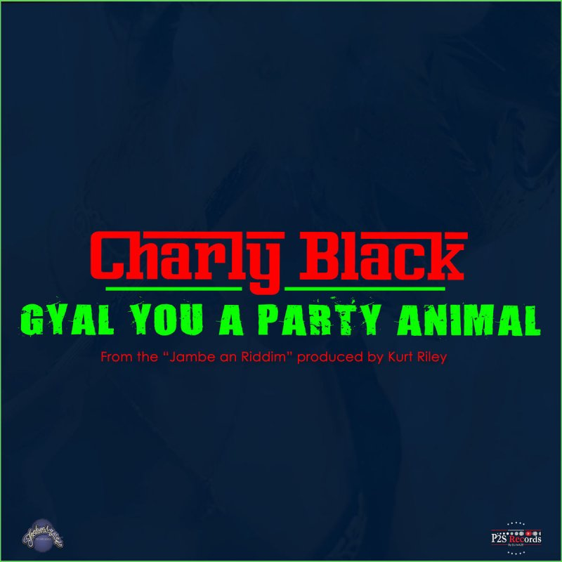 Charly Black – Gyal You A Party Animal