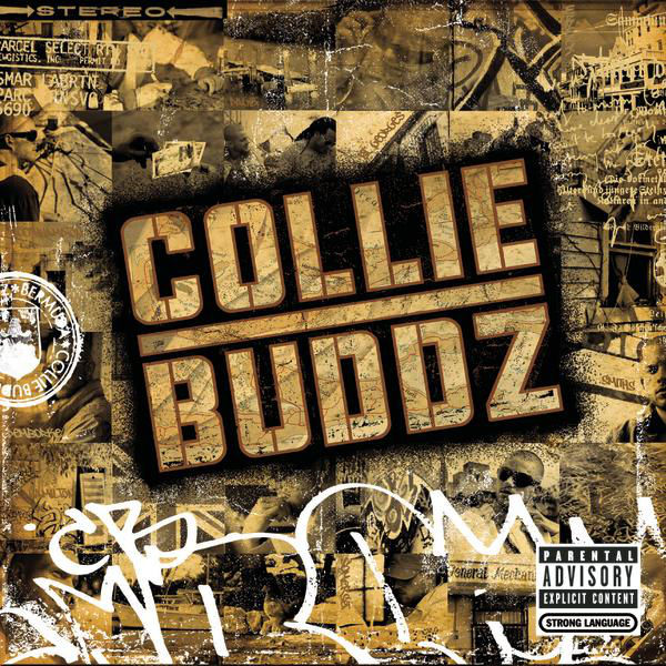 Collie Buddz – Blind to You