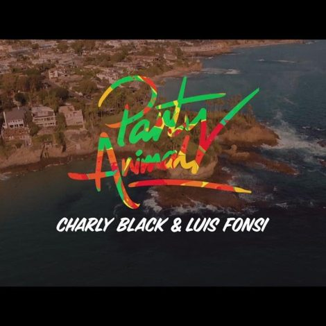 Charly Black, Luis Fonsi – Party Animal