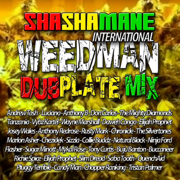 Collie Buddz – Shashamane Come Around